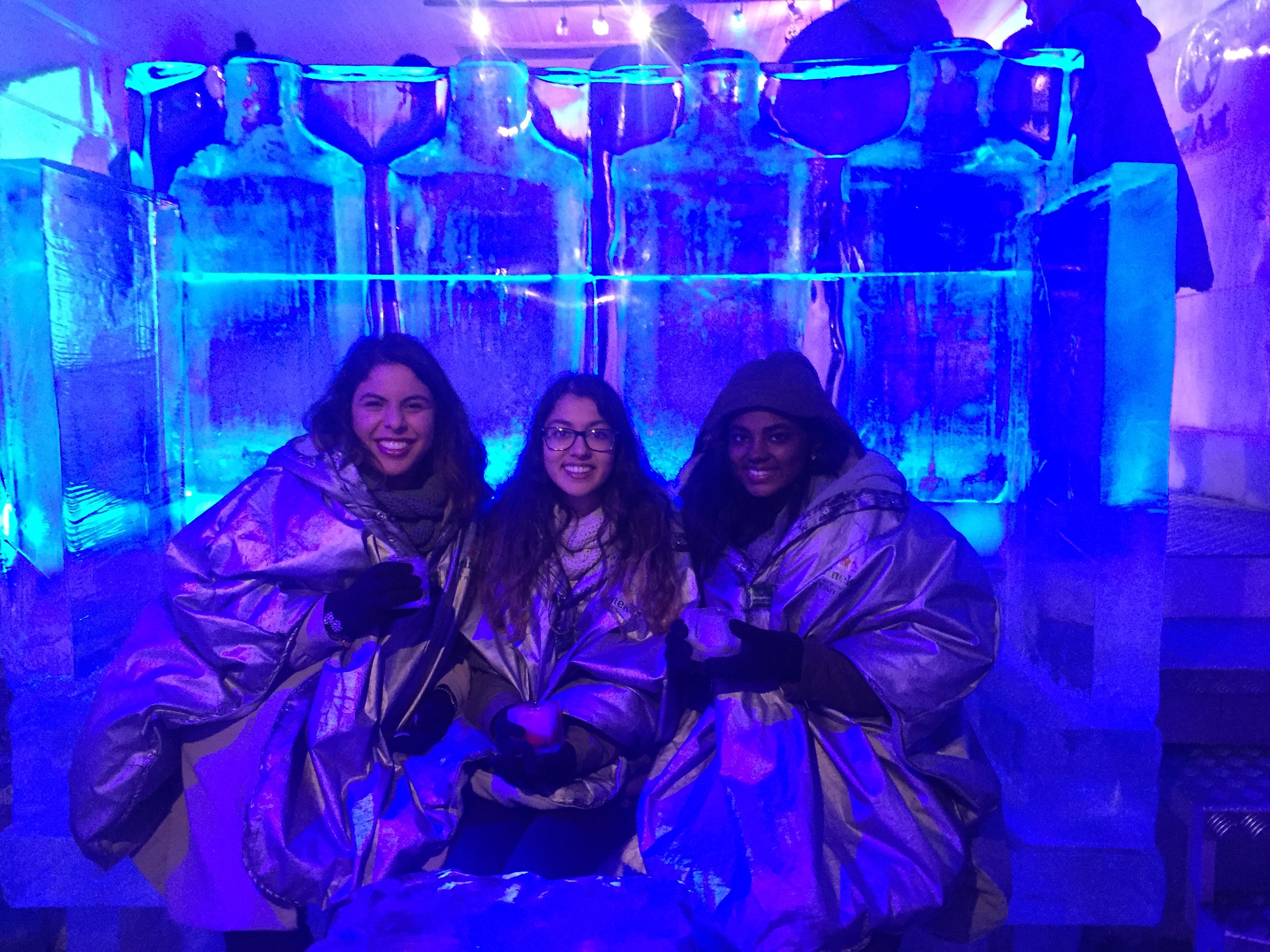 Students Ice Hotel